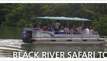 Black River Safari