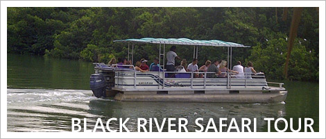 tour_black_river