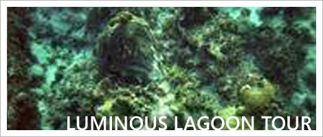 tour_lagoon